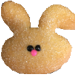 Bunny Cookie